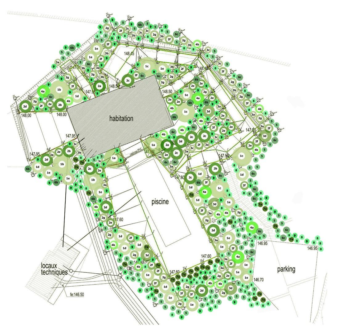 1438141256-ntw-trees-plants trees plan