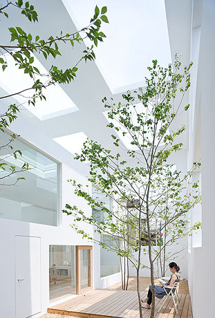 House  N / Sou Fujimoto