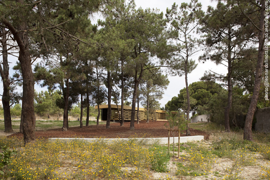 General view of the pavilion through the pine-trees forest © Leonardo Finotti