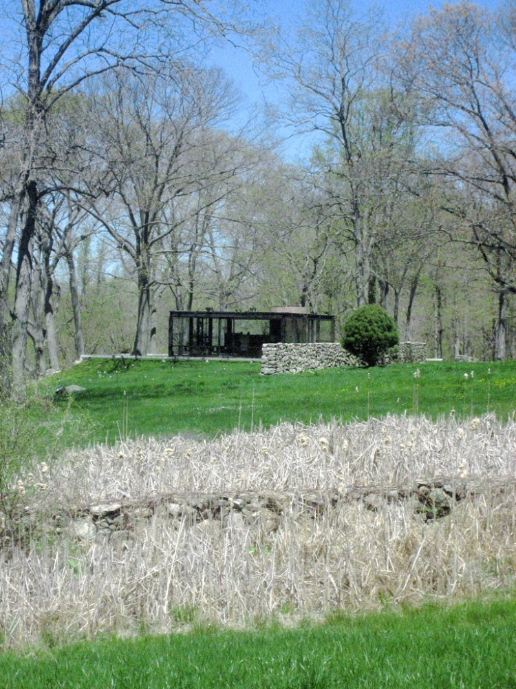 AD Classics: The Glass House / Philip Johnson