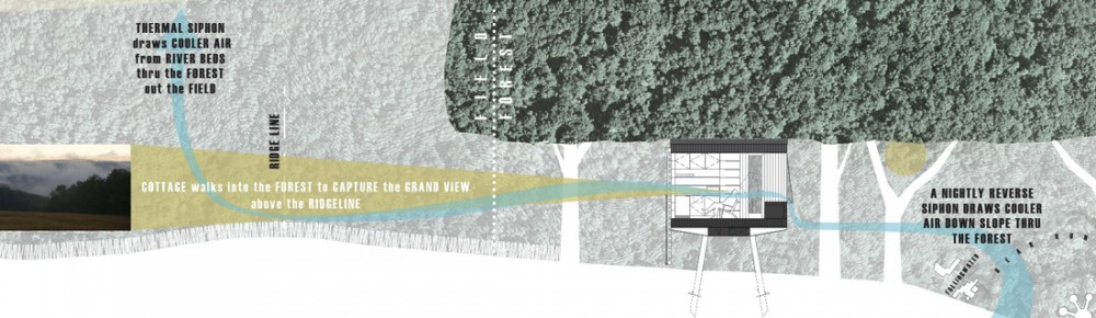 Fallingwater On-Site Cottages Competition proposal / Wendell Burnette Architects