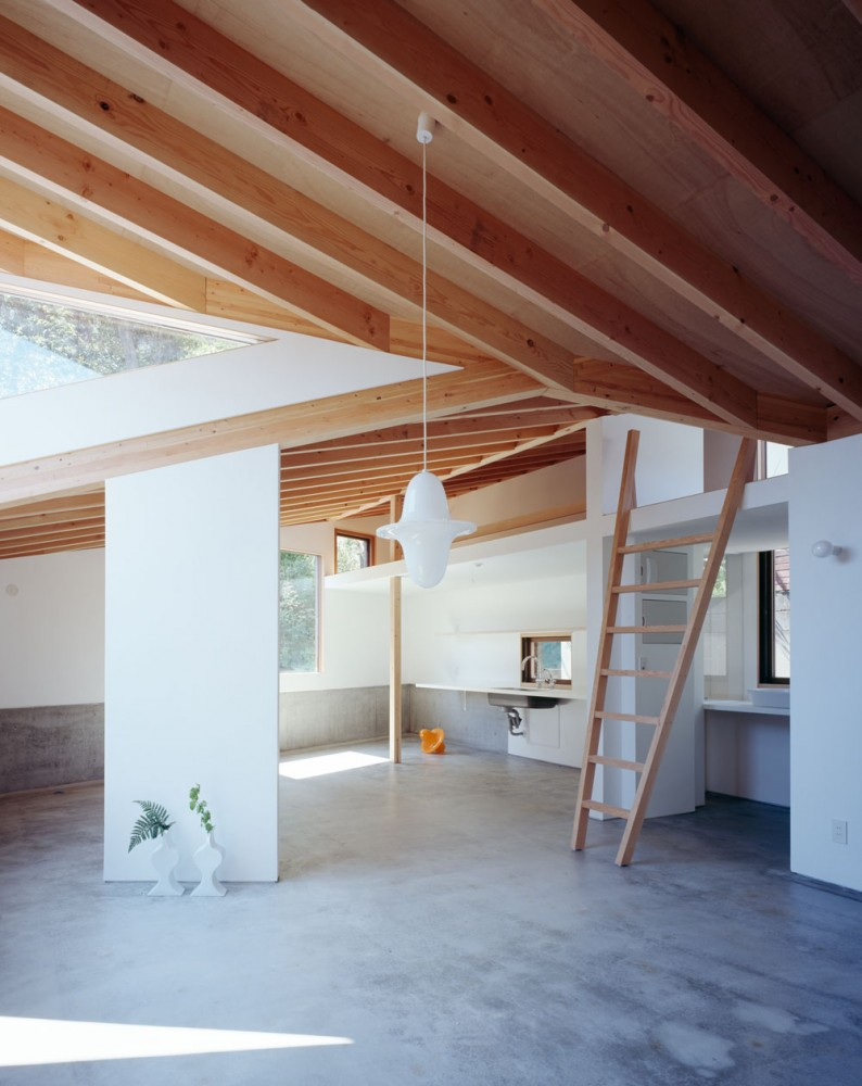 The Two Houses in Kamakura / Cell Space Architects