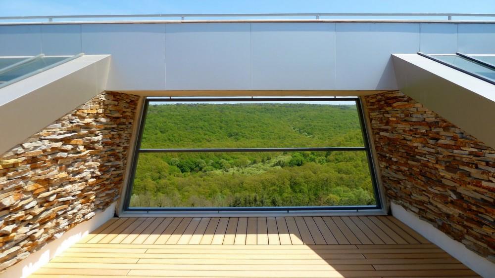 Large Home Tree - Ignatov Architects © Courtesy of Ignatov Architects