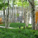 The New York Times Building Lobby Garden / HM White Site Architects and Cornelia Oberlander Architects Courtesy of HM White Site Architects