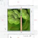 garden plan garden plan