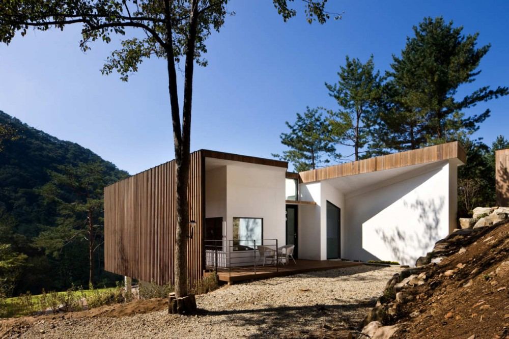 Forests Quintet / Chiasmus Partners