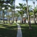 Miami Beach Soundscape / West 8 Courtesy of West 8 urban design & landscape architecture