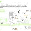 Habitat for Urban Wildlife / Ofer Bilik Architects Biodiversity