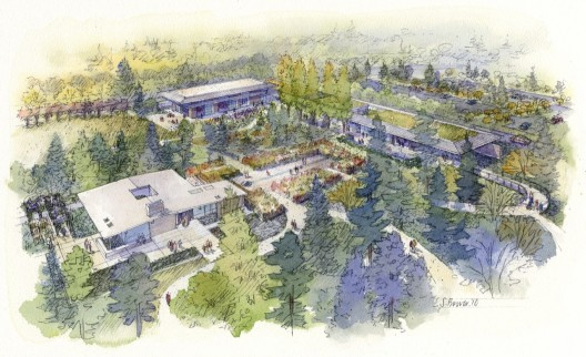 Rendering of an aerial view to Bellevue Botanical Garden  © Olson Kundig Architects