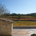 Spring in Pantone 375C, Mas Rodó Winery / SALA FERUSIC Architects (11) © SALA FERUSIC Architects
