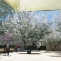 The Barnes Foundation on the Parkway / Tod Williams + Billie Tsien (1) © The Barnes Foundation