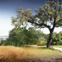 Apple Campus in Cupertino, Foster + Partners, ARUP & Kier + Wright (35) © Foster + Partners, ARUP, Kier + Wright, Apple