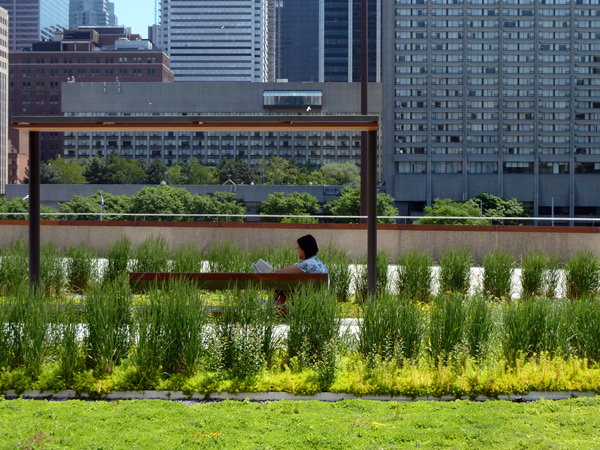 PLANT Receives Honorable Mention for NPS Roof Garden