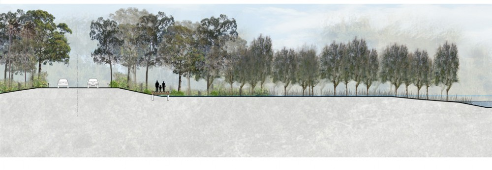 Narrabeen Lagoon Multi-use Trail Stage 1 / ASPECT Studios