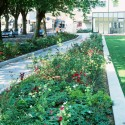Warrior Square Gardens / Gillespies (8) © Colin Philp