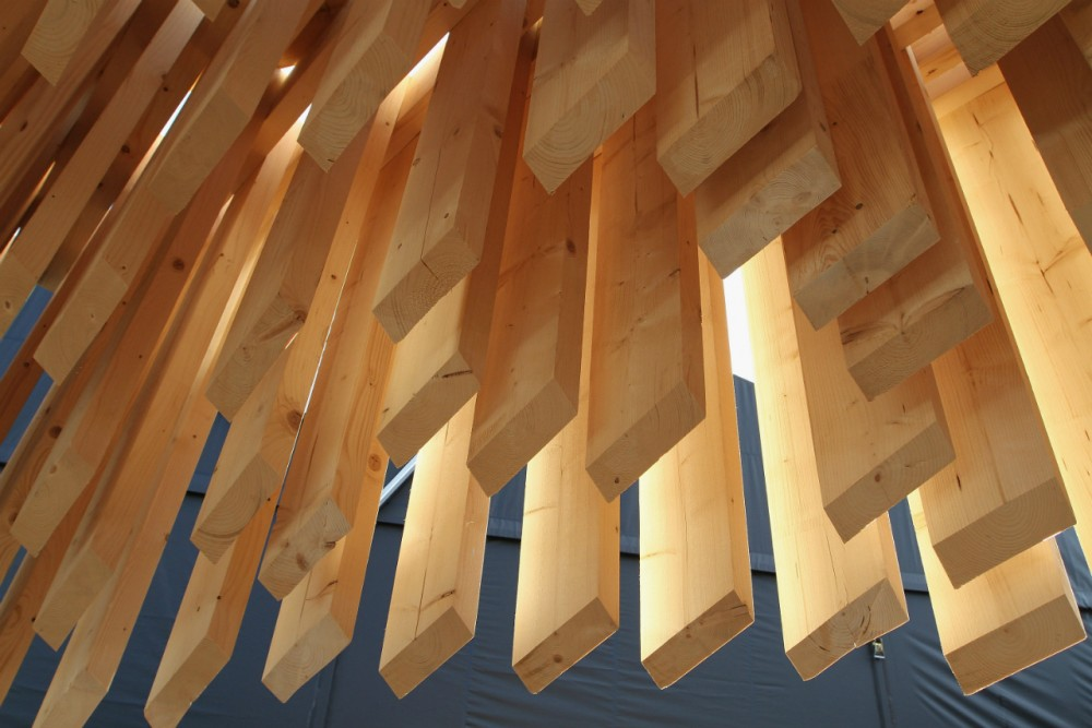Genesis / David Adjaye