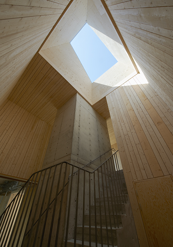 Cemetary Service Building at Ulriksdal / Petra Gipp Arkitektur ​and In Praise of Shadows
