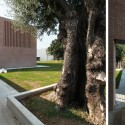 The Court Of The Trees / Tomas Ghisellini Architects © Tomas Ghisellini