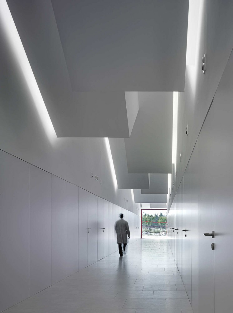 Center for Individuals with Disabilities / g.bang architecture