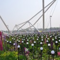 Interview: Plasma Studio on Xi'an International Horticultural Expo (4) © Aidan Flaherty