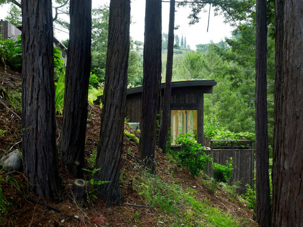 Mill Valley Cabins / Feldman Architecture