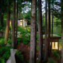 Mill Valley Cabins / Feldman Architecture  Joe Fletcher