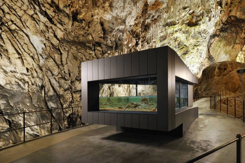 Human Fish Pool in the Postojna Cave / Studio Stratum