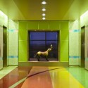 Phoenix Childrens Hospital / HKS Architects (7) Courtesy of HKS Architects