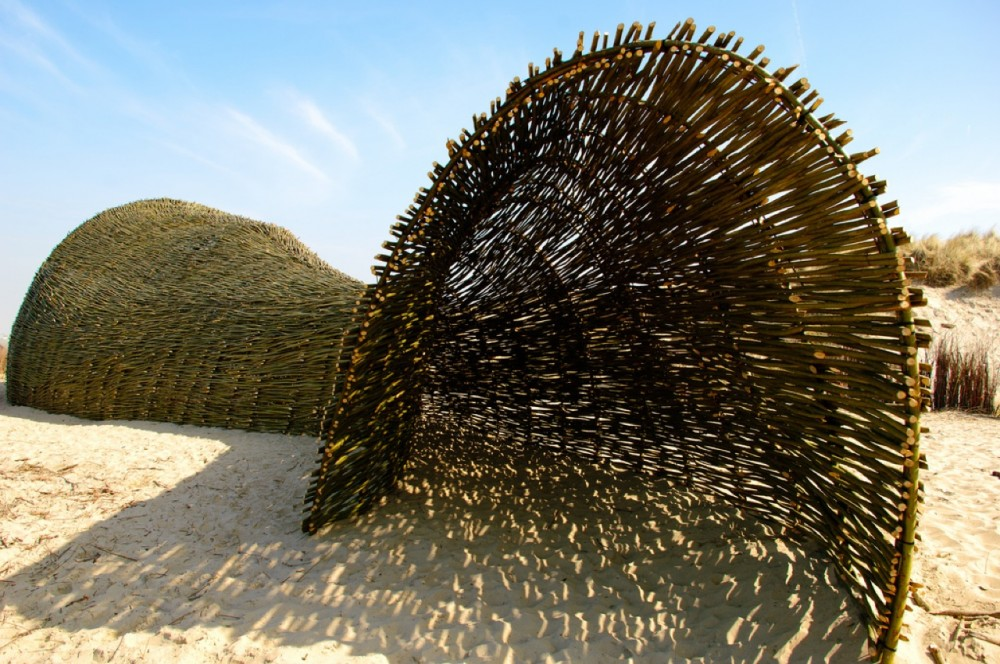 SANDWORM / Marco Casagrande
