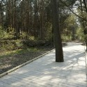 159AD20120405D0015 Walkway in the Forest |  Thomas Mayer