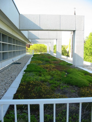 Skokie Public Library Green Roof  Skokie Public Library