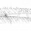 Ewha Womans University / Dominique Perrault Architecture (56) sketch