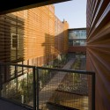 ASU_Bill Timmerman_15 ASU Polytechnic Academic District / RSP Architects and Lake Flato Architects  Bill Timmerman