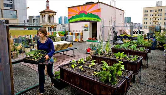 Urban Agriculture: Designing Out the Distance Between You And Your ...