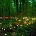 Bruce Munros stunning LED Installations light up Longwood Gardens (15) Courtesy of Bruce Munro