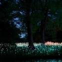 Bruce Munros stunning LED Installations light up Longwood Gardens (11) Courtesy of Bruce Munro