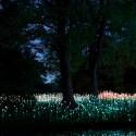 Impresionantes Bruce Munro Instalaciones LED iluminan los jardines de Longwood (11) Cortesía de Bruce Munro