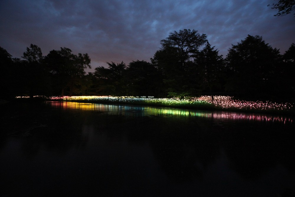 Bruce Munro's stunning LED Installations light up Longwood Gardens (10) Courtesy of Bruce Munro