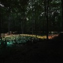 Bruce Munro's stunning LED Installations light up Longwood Gardens (22) Courtesy of Bruce Munro