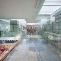 Glass House for Diver / naf architect & design (26) © Noriyuki Yano
