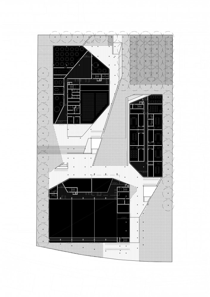 Primary and Secondary School Proposal / RaichdelRio