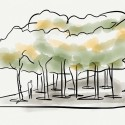 AMP concept sketches-2 Concept Sketches. We drew inspiration from a dense forest grove that creates a protective canopy from the elements. © Studio a+i