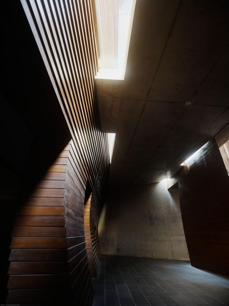 Sunwell Muse Kitasando by Takato Tamagami and Tsutomu Hasegawa - harry - 哈梨见竹视雾所