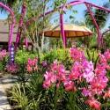 5000a35928ba0d4aa2000020_gardens-by-the-bay-grant-associates_86435-malay-ga-original-1339586301-125x125.jpg