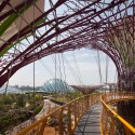 Gardens by the Bay / Grant Associates Courtesy of Grant Associates