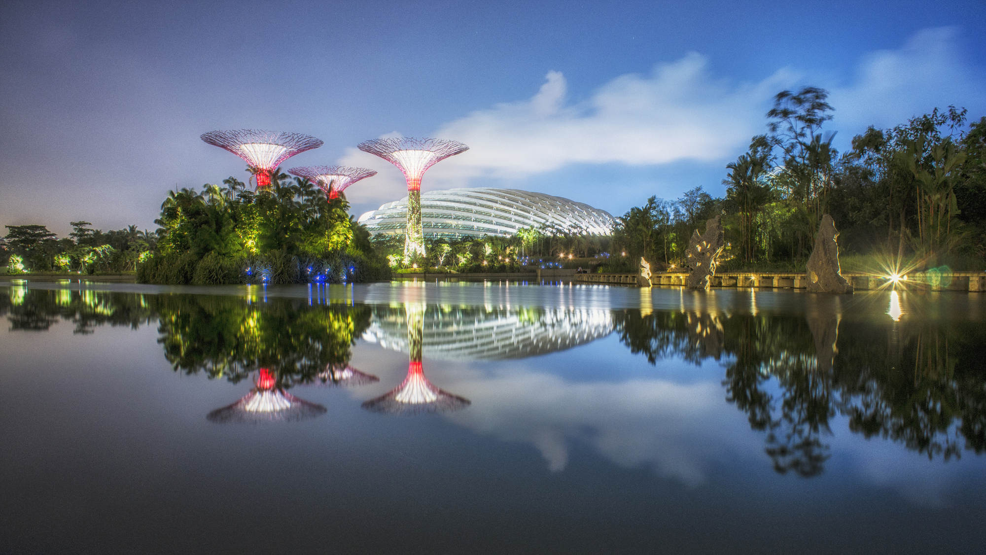 Supertree Grove Gardens By The Bay Est100
