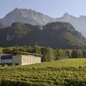 Winery Gantenbein / Gramazio & Kohler + Bearth & Deplazes Architekten © Ralph Feiner