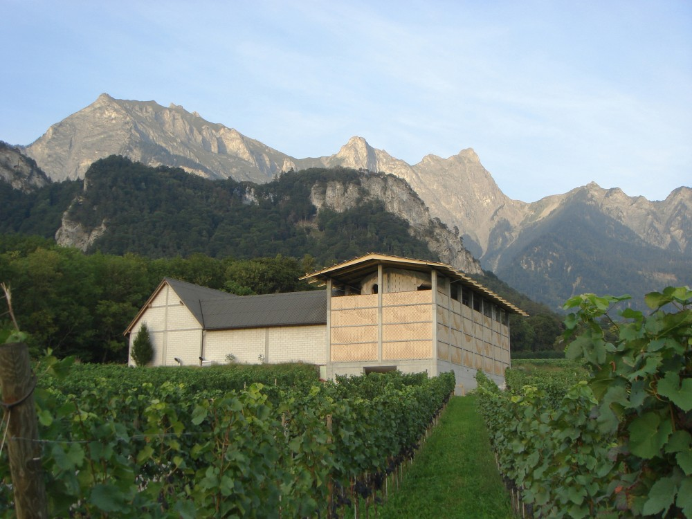 Winery Gantenbein / Gramazio & Kohler + Bearth & Deplazes Architekten