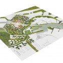 Active Cranes Research Proposal (3) masterplan 01