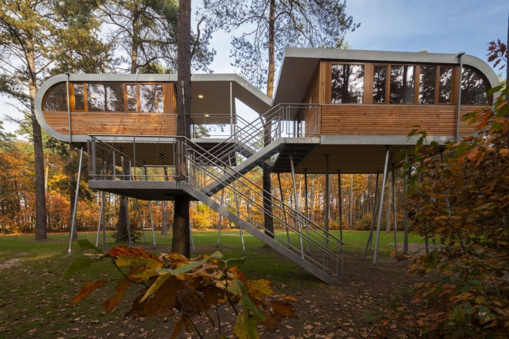 The Tree House / Baumraum